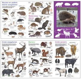 Zoekkaart A5 | Zoogdieren