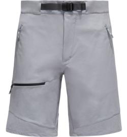 Lizard shorts men