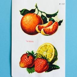 Decal sinaasappel aardbei
