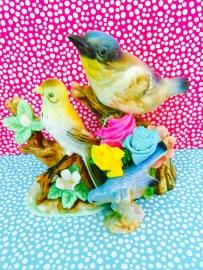 kaartje birds