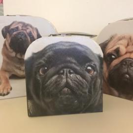 Set van 3 kartonnen koffertjes mopshond