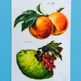 Decal abrikoos citroen