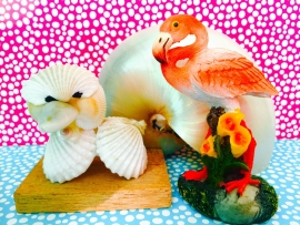 kaartje schelpen en flamingo