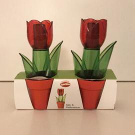 Peper en zoutstel hollandse tulpen