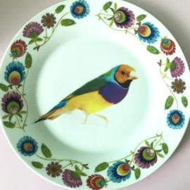 Bordje kleurrijke vogel