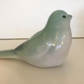 Porceleinen vogeltje groen