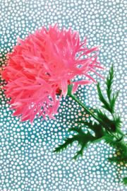 Kaartje kitsch bloem