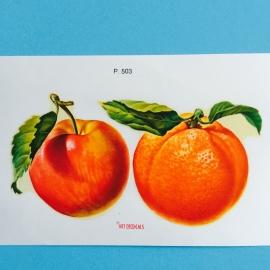 Decal sinaasappel en appel