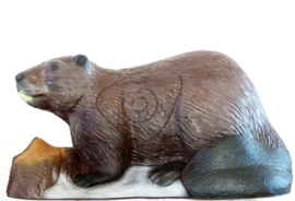 3d bever leitold