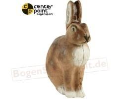 CENTER-POINT 3D Haas