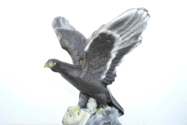 3d steen adelaar leitold