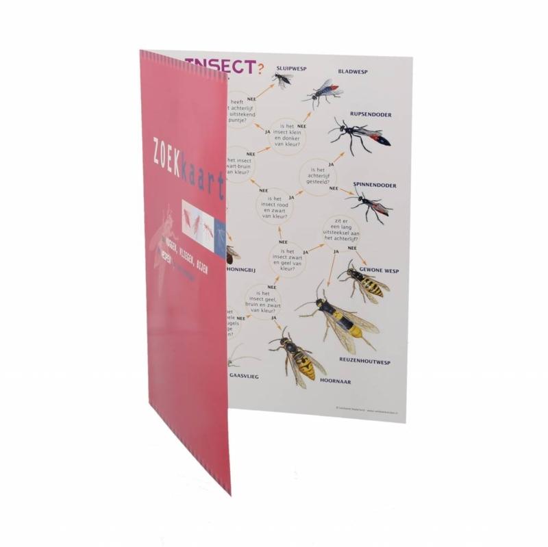 Zoekkaart Muggen, Vliegen, Bijen en Wespen (Insecten)