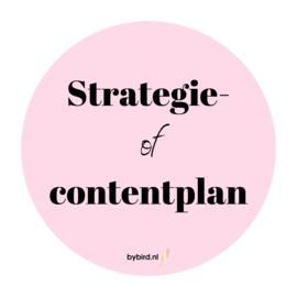 Strategieplan