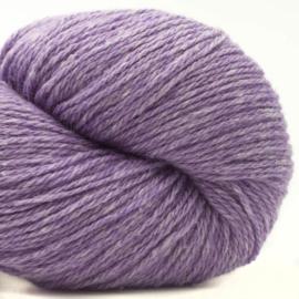 Bio Balance 23 Purple