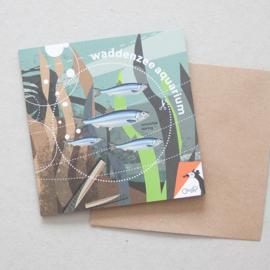 Waddenzeeaquarium | verkoopprijs € 5,95