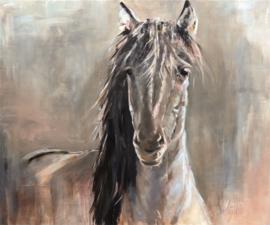 Geschilderd paard - Weijers, Konik 120x100 cm
