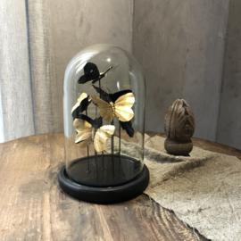 Stolp met gouden vlinders - H26x D15 cm