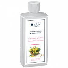 Luminous Mimosa / Lumineux Mimosa