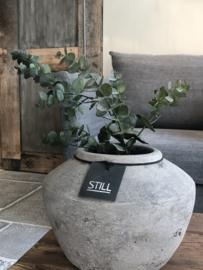 Eucalyptus tak - 79 cm