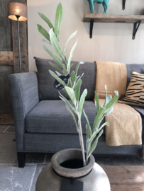 Olijfblad tak - 70 cm