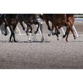 Rennende paarden 180x120 cm