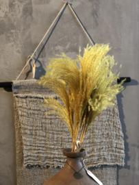Bosje gele gekleurde pluimen - 70/75 cm