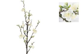 Witte bloesemtak - 127 cm