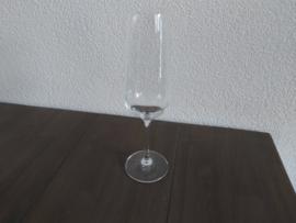 Vivo - Champagneglas  22,5 cm hoog