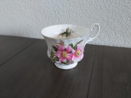Prairie Rose - Losse kop (herenmodel)