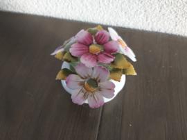 Oktober - Bloemen Cosmos 6 cm hoog