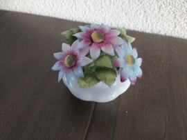 September - Bloemen Michaelmas Daisy  5,5 cm hoog