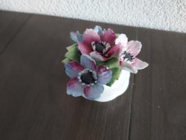 Maart - Bloemen Anemones  6 cm hoog