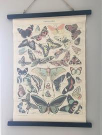 vintage look vlinder wandkaart