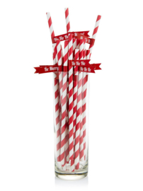 PAPIEREN RIETJES 'CHRISTMAS CHEER' GINGER RAY (25ST)