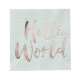 SERVETTEN 'HELLO WORLD' GINGER RAY (20ST)