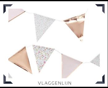 Vlaggenlijn slingers Feestartikelen feestversiering online kopen hip, trendy & stylish