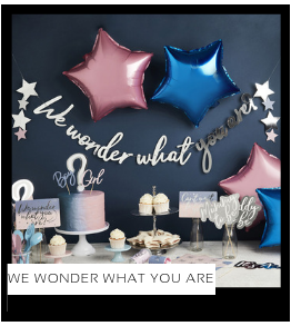 we wonder what you are Babyshower versiering decoratie Collecties van merk Ginger Ray talking Tables Meri Meri Hootyballoo Neviti feestartikelen online kopen