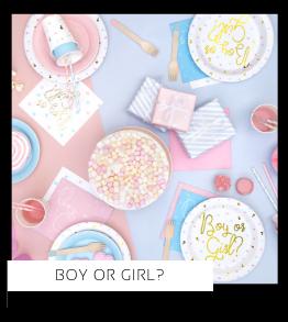 Boy or Girl Babyshower versiering decoratie Collecties van merk Ginger Ray talking Tables Meri Meri Hootyballoo Neviti Partydeco feestartikelen online kopen