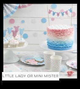 Little Lady or Mini Mister Babyshower versiering decoratie Collecties van merk Ginger Ray talking Tables Meri Meri Hootyballoo Neviti feestartikelen online kopen