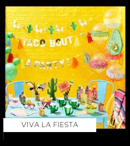 Viva la Fiesta Cactus Mexicaans thema feestartikelen en feestversiering merk kopen bij PretaPret altijd hip en trendy