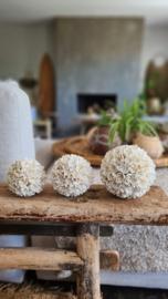 Flower schelpenbollen set van 3