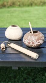 Bamboe rietjes met koker