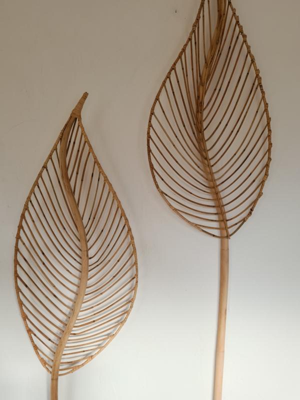 Rotan leaves