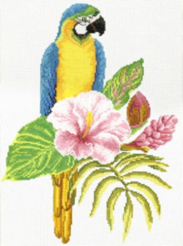 Borduurpakket Kruissteek | Blauwgele papegaai - voorbedrukt stramien