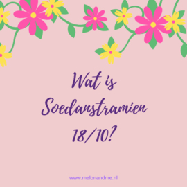 Wat is Soedanstramien 18/10?