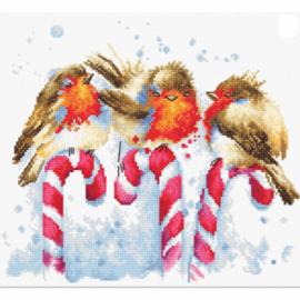 Borduurpakket Kruissteek | Vogeltjes kerst (Roodborstjes Luca-S)