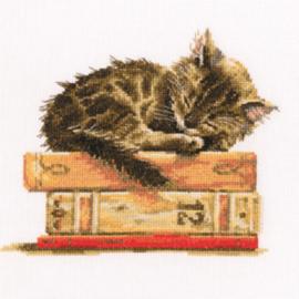 Borduurpakket Kruissteek   Kat slaapt op boeken (Cat's Dream - RTO)