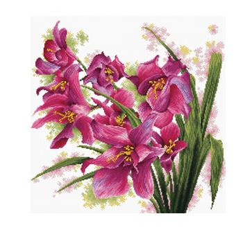 Borduurpakket Kruissteek   Orchideen - voorbedrukt stramien (Needleart World)