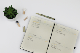 My Journal A5 Dotted Papier + GRATIS Sakura Pigma Micron PN Fineliner