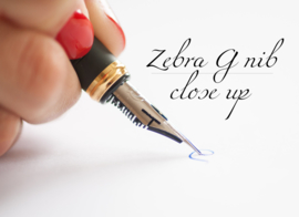 Jinhao X450Flexy Zebra G-Nib Calligraphy Vulpen, extra meegeleverd  Zebra G-Nib Titanium